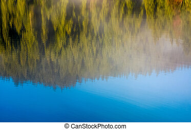 lake surface reflecting spruce forest and sky - beautiful...