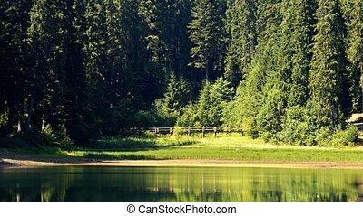 Lake Synevir in Carpathian Mountains in Ukraine