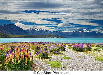 Lake Tekapo, Southern Alps, New Zealand