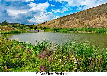 Lake view of parc des ?les, H?nin Beaumont, Hauts de France, France
