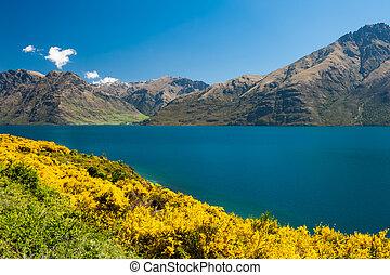 Lake Wakatipu - Beautiful lake Wakatipu with mighty ...