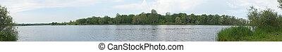 Lake with a forest on the opposite shore
