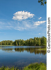Lake with forest and clear blue sky reflection in water