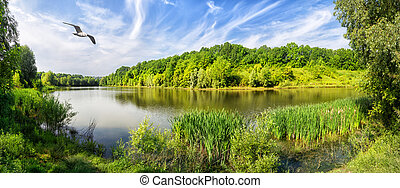 Lake with green trees on shore and bird in sky