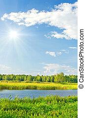 lake with green vegetation