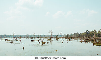 Lake with old trees sticking out of the water in Cambodia near ancient Angkor Wat Temple Ruin Complex