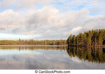 lake with reflections