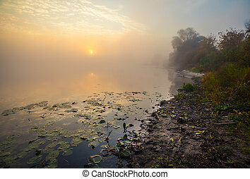 Lake with the fog at sunrise