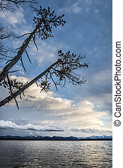 Lake with trees and clouds