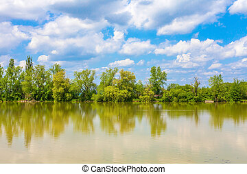 Lake with trees and cloudy sky