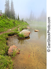 Lake with yellow sand and rocks in the fog: trail with fir trees.