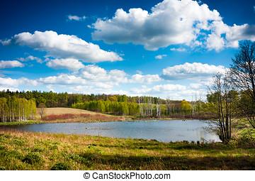 Lakes of Warmia Masuria. Poland - Lake surrounded by forest,...