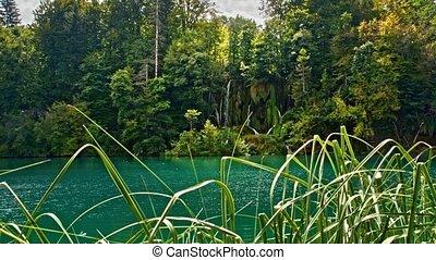 Lakes with waterfall in Croatia, Europe. Location: Plitvice, National Park Plitvicka jezera.