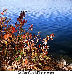 lakeshore, einige, -, minnesota, glühen