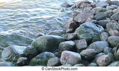 Lakeshore summer stones water and birds