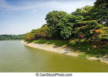 Lakeside - A view of Lal Bagh lake, Bangalore, India