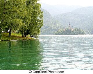 lakeside, arbres verts