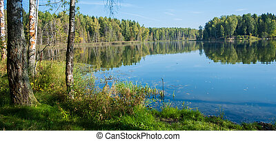lakeside, foresta