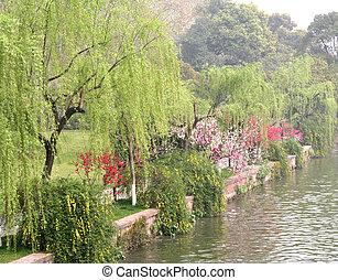 Lakeside in Spring - Lakeside of West Lake (Xihu) in...