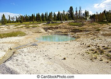 lakeside, ressorts, yellowstone