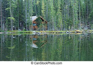 lakeside, selva, cabana