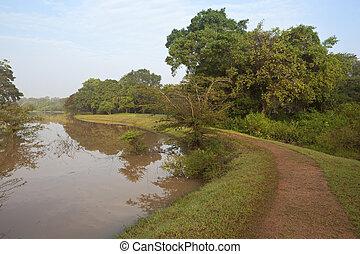lakeside, sentier, anuradhapura