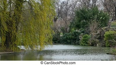 Lakeside View of an Landscape Garden.