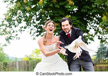 lakodalmi, pár, noha, repülés, fehér, gerle, -ban, esküvő