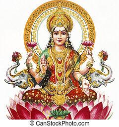 lakshmi,  hindú, diosa,  -