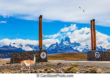Lama guanaco near symbolic columns