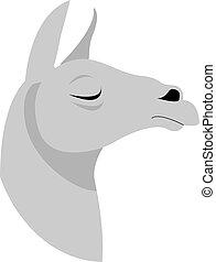 Lama, illustration, vector on white background.