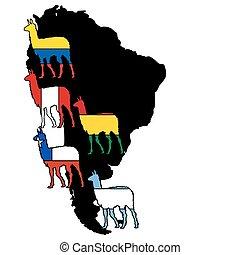 Lama South America