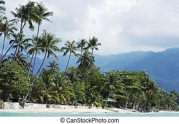 lamai, thailand), playa, (koh, samui