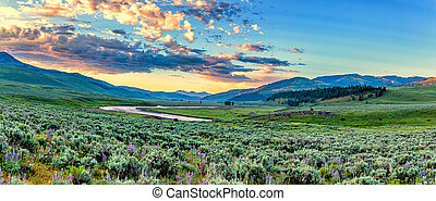 Lamar River Yellowstone