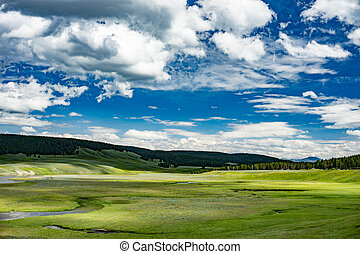 Lamar Valley in Yellowstone National Park, Wyoming.