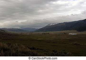 Lamar valley in Yellowstone National Park. It is famous for it's abundant wildlife.
