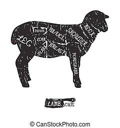 lamb., 型, 印刷である, 肉屋, アメリカ人, 切口, 案, hand-drawn