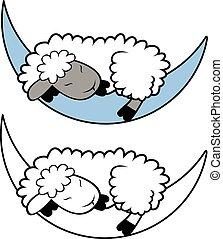 Sheep sleeping. Lamb ard with cute