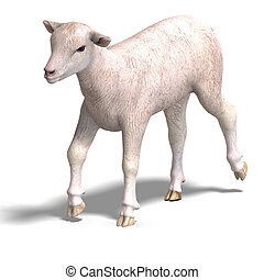 lamb - rendering of a young sheep with clipping path and ...