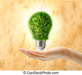Lamp bulb made of grass in female hand