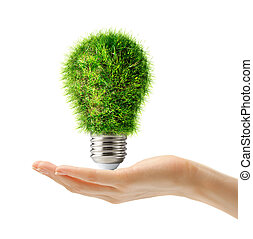 Lamp bulb made of green grass in hand