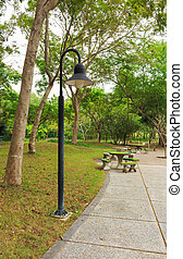 lamp in the Park