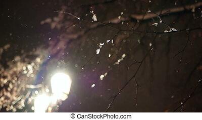Lamp night city park - Night lamp snow park in the city