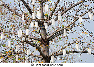 lamp on tree