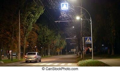 Lamp park trees night