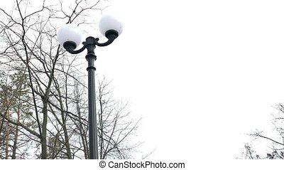lamp Vintage street lampot post landscape nature park path tiles