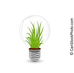Lamp with grass inside isolated on white background