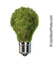 lampadina, con, albero, posto, di, vetro.