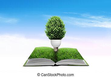 lampe, à, arbre vert, four, les, livre, pour, vert, eco, concept