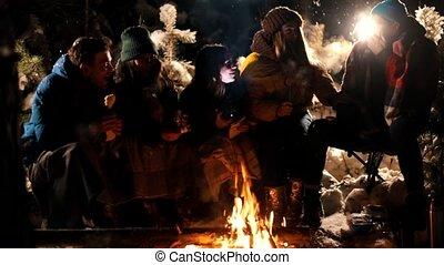 lampe électrique, effrayant, femme, groupe, hiver, elle, gens, effrayé, séance, jeune, fire., forêt, tenue, dire, obtenu, homme, amis, face., histoire